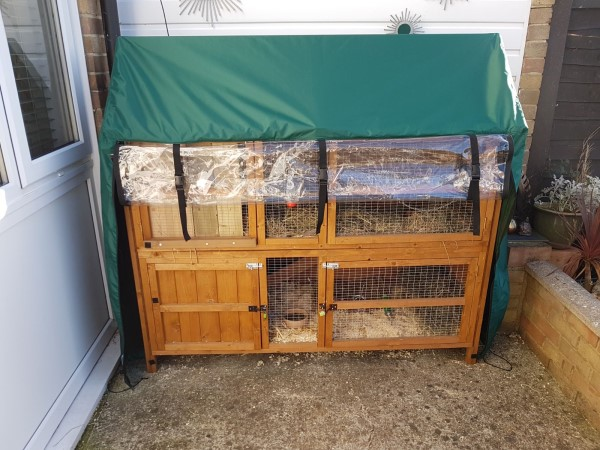 Honeysuckle Hutch Cover